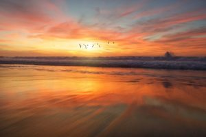 Por que os médicos recomendam visitas regulares a praia? 4
